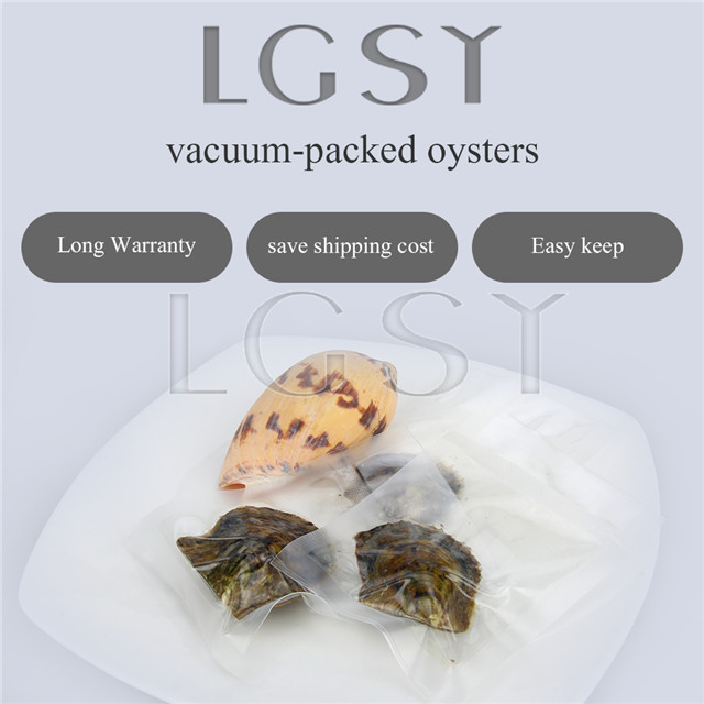 50PCS pearl oysters with AAA Grade 7-8mm Two Round Akoya pearls