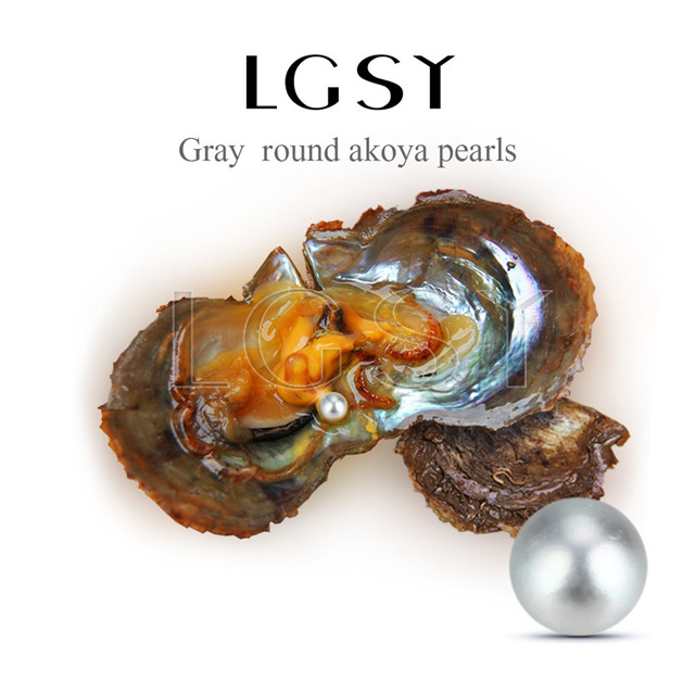 wholesale 6-7mm saltwater round Akoya gray pearl oyster 50pcs