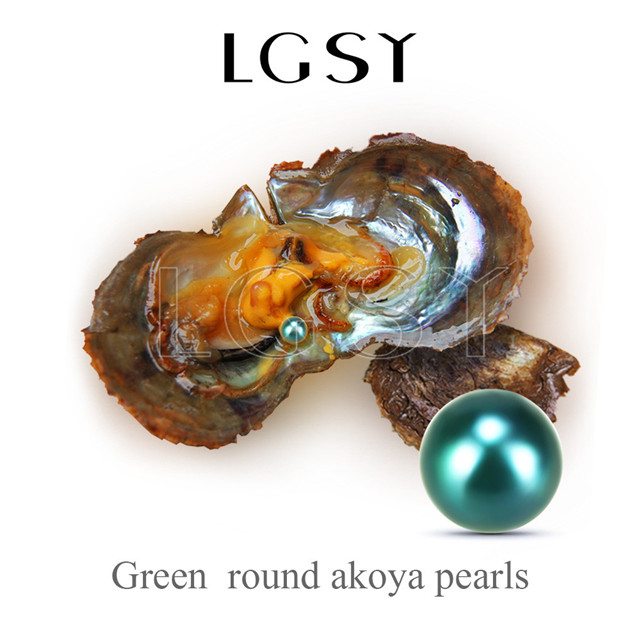wholesale 6-7mm saltwater round Akoya green pearl oyster 50pcs