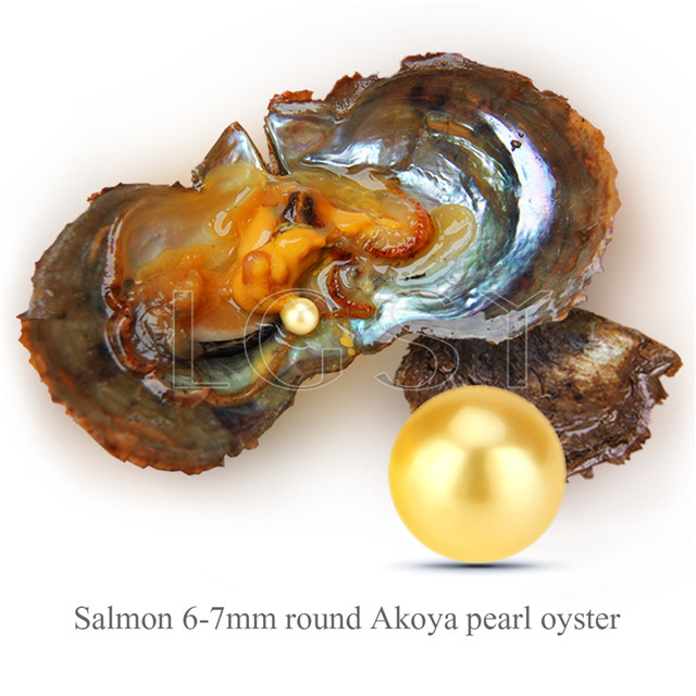 wholesale 6-7mm saltwater round Akoya gold pearl oyster 30pcs