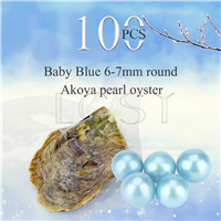 Attractive wholesale 6-7mm saltwater round Akoya Baby blue pearl oyster 100pcs