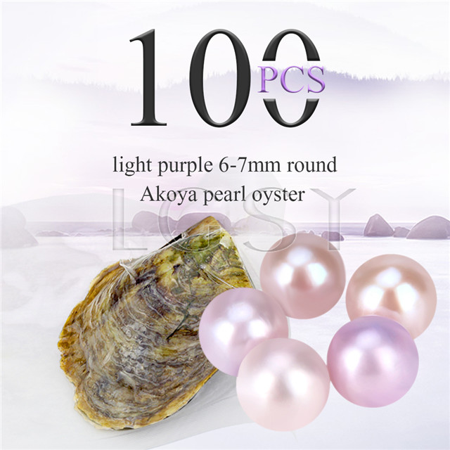 Attractive wholesale 6-7mm saltwater round Akoya Light purple pearl oyster 100pcs