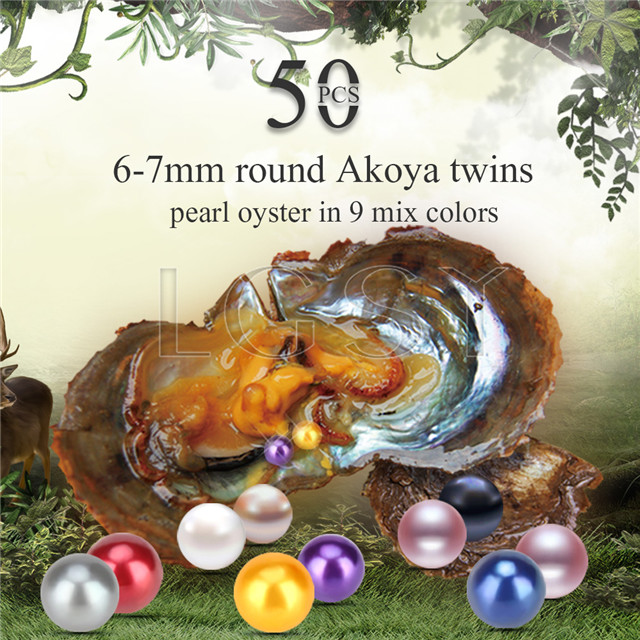 6-7mm saltwater round Akoya mixed colors twin pearls oyster 50pcs