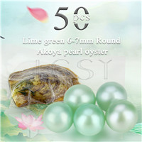 Latest Lime green 6-7mm saltwater round Akoya pearl oyster 50pcs
