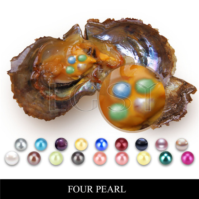 6-7mm mixed colors round Akoya Four pearls oyster 100pcs