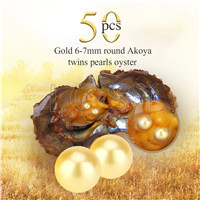 Newest 6-7mm Gold saltwater round Akoya twin pearls oyster 50pcs