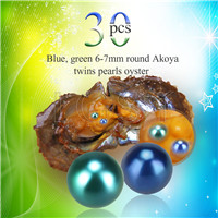 Newest 6-7mm Blue Green saltwater round Akoya twin pearls oyster 30pcs