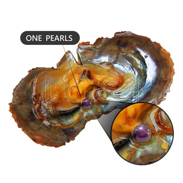 Popular 7-8mm Bright purple saltwater round Akoya pearls oyster 30pcs
