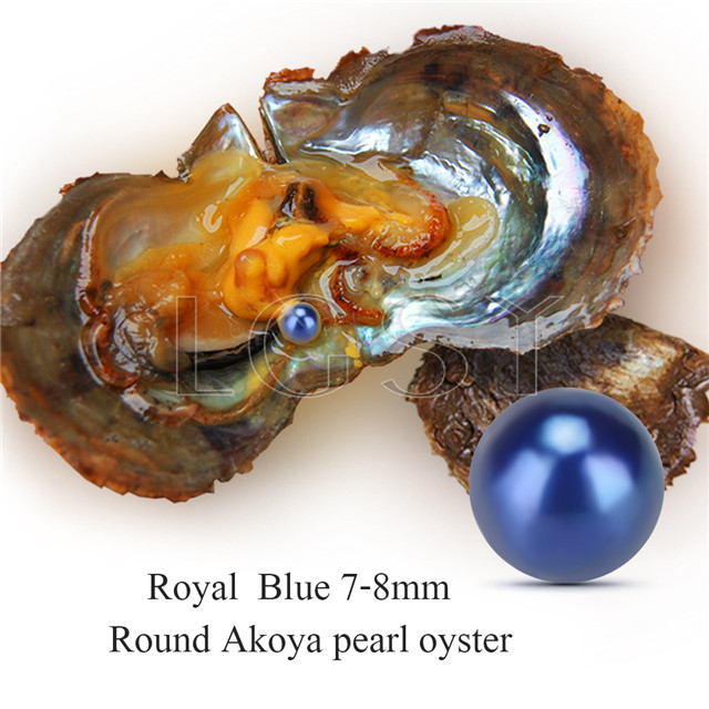 Newest 7-8mm Blue saltwater round Akoya pearl oyster 100pcs