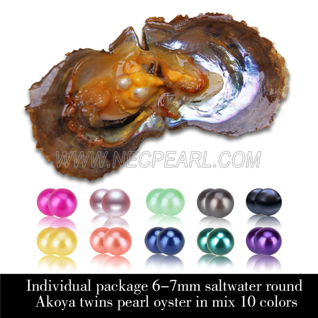 Mixed 10 colors 6-7mm saltwater round Akoya twin pearls oyster 30pcs